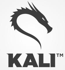 Kali Experts